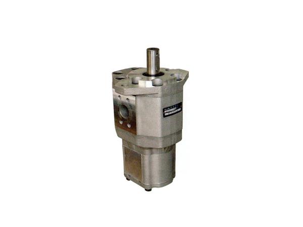 CBQTF—*5/ F4双联齿轮油泵